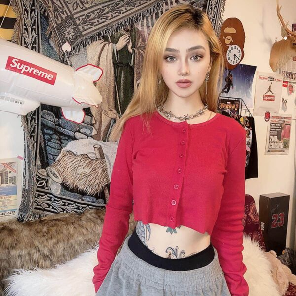 Lined Cropped Vintage Cardigan 2- Orezoria Aesthetic Outfits Shop - Aesthetic Clothing - eGirl Outfits - Soft Girl Outfits