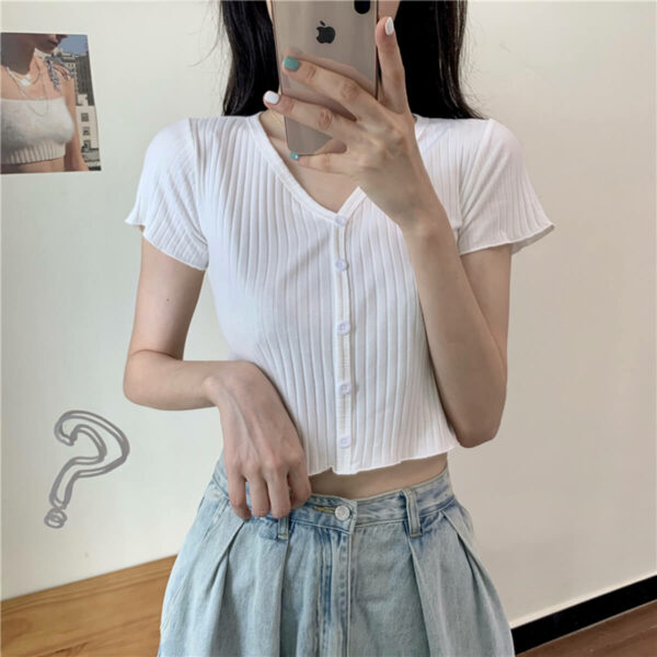 Lined V Neck Aesthetic Crop Top